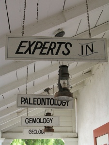 The Experts Are In