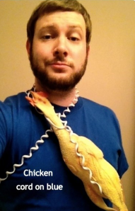 Chicken Cord on Blue