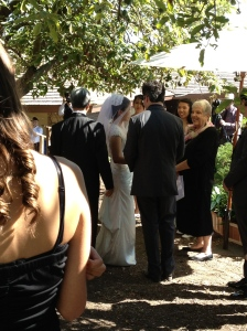 Wedding in the Grove